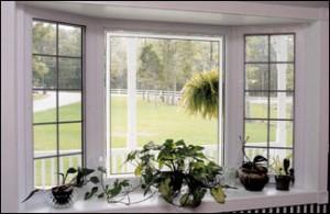 Bay Window Naperville IL